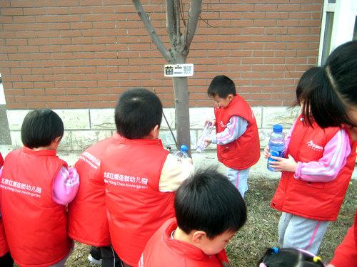 植树节活动_园内活动_做中国幼儿园连锁经营