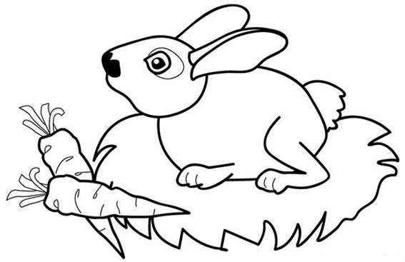 幼儿简笔画 兔子乖乖