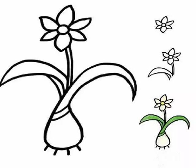 简笔画丨各种植物简笔画大全 为孩子收藏