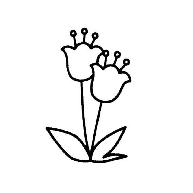 【简笔画】植物简笔画教程3