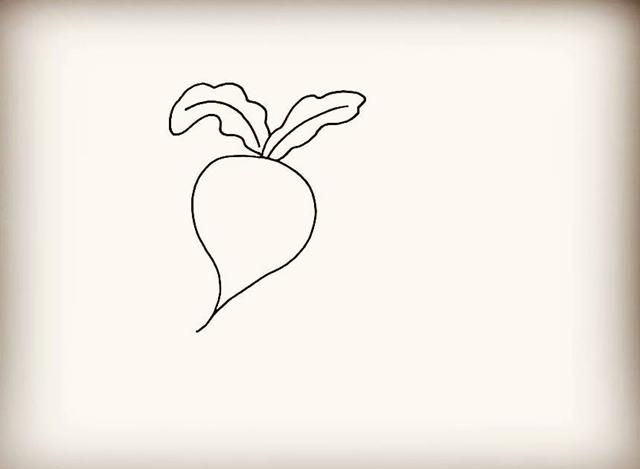 【简笔画】萝卜