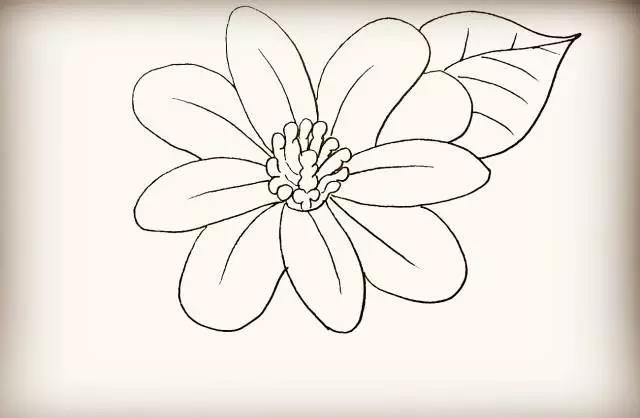 简笔画花朵-美工 北京Yojo幼儿园联盟