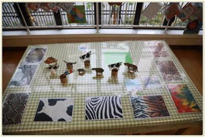 小班主题环境创设——可爱的小动物