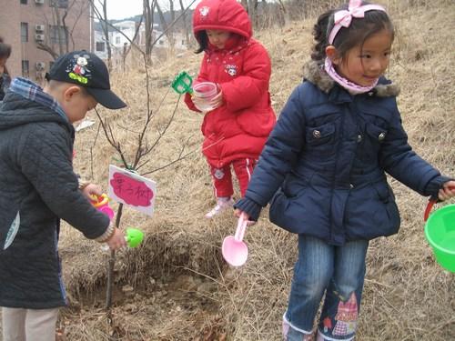 幼儿园植树节活动_